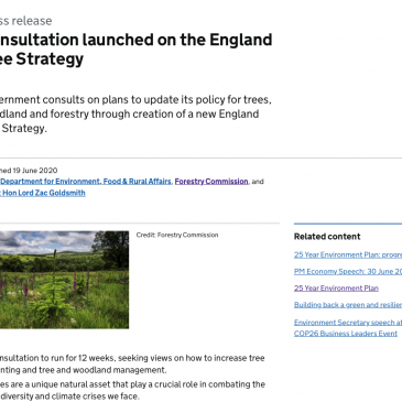 England Woodland Tree Strategy Consultation