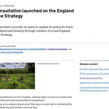 England Woodland Tree Strategy Consultation